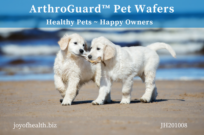 ArthroGuard Pet Wafers - Collagen
